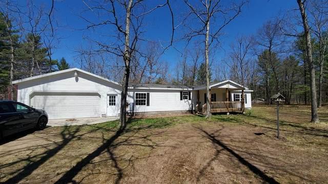 10297 M-37, BALDWIN VLG-P.P.TWP, MI 49304 (#72021015105) :: Real Estate For A CAUSE