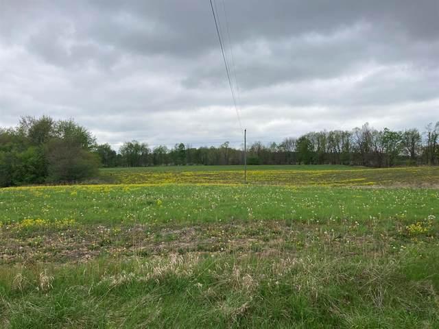 A N Ionia Road, Sunfield Twp, MI 49096 (#65021015115) :: Novak & Associates