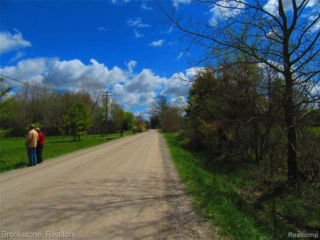 0000 Puttygut Road, Casco Twp, MI 48064 (#2210031604) :: RE/MAX Nexus
