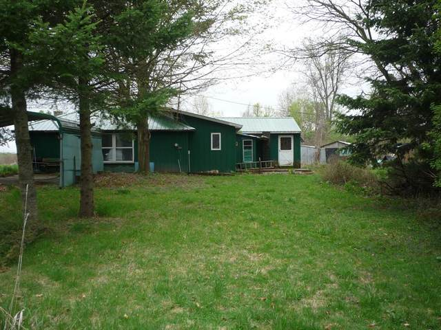427 Jonesville Road, Coldwater Twp, MI 49036 (#68021015224) :: Real Estate For A CAUSE