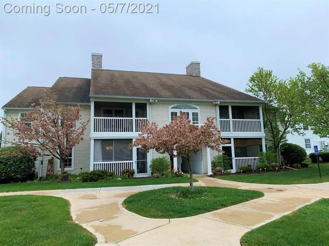 1213 Joyce Lane, Scio, MI 48103 (#543280636) :: Real Estate For A CAUSE