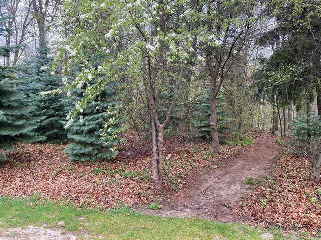 1255 N Hampstead Drive, Laketon Twp, MI 49445 (#71021015807) :: Real Estate For A CAUSE