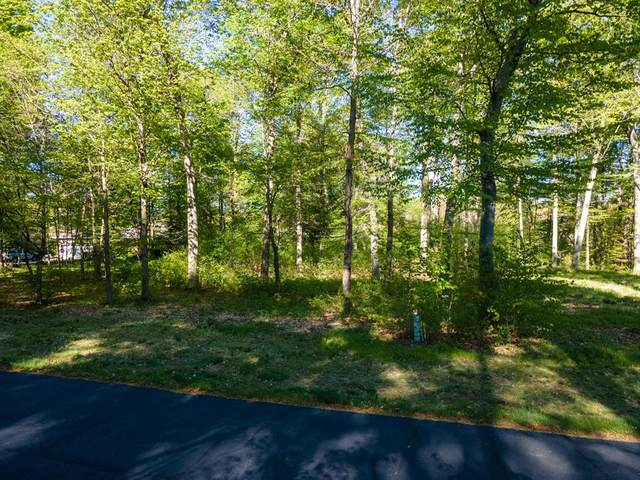 VL Hawksnest Drive, Casco Twp, MI 49090 (#69021015833) :: RE/MAX Nexus