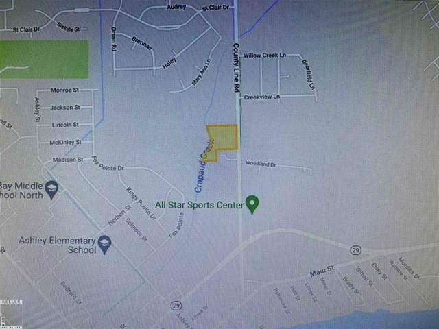County Line (New Baltimore Self Storage), New Baltimore, MI 48047 (#58050040970) :: NextHome Showcase