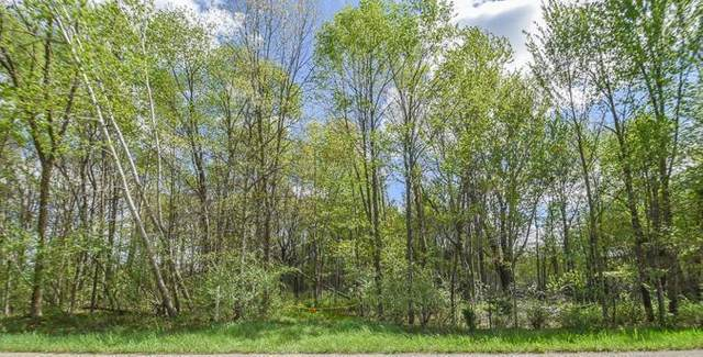Grass Lake Rd, OVID TWP, MI 49036 (#62021015863) :: NextHome Showcase