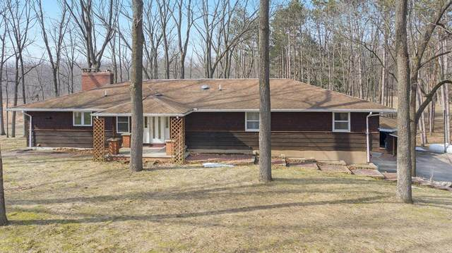 9551 Ravine Road, Alamo Twp, MI 49009 (#65021015904) :: Novak & Associates