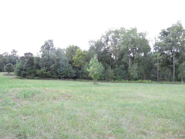 PARCEL 5A Fisher Road, Howell Twp, MI 48855 (#2210032978) :: The Mulvihill Group