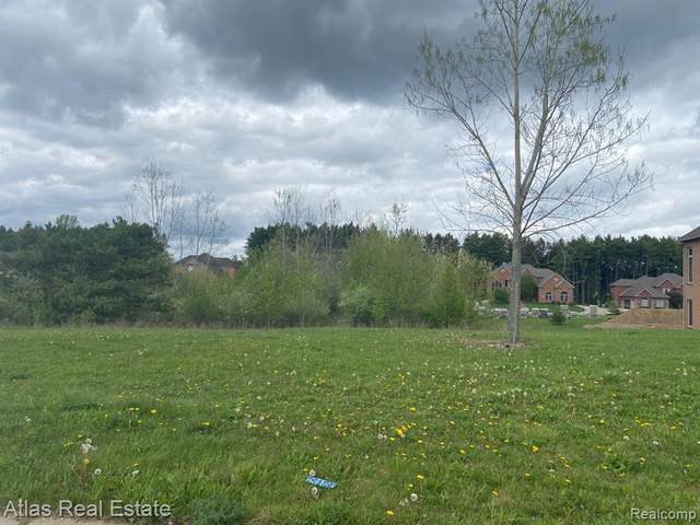 VL Rivershyre Parkway, Davison Twp, MI 48423 (#2210033083) :: Real Estate For A CAUSE