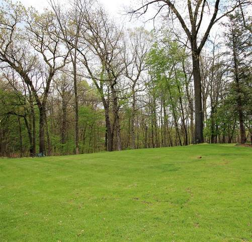 Limberlost Road, Lockport Twp, MI 49093 (#68021016056) :: RE/MAX Nexus