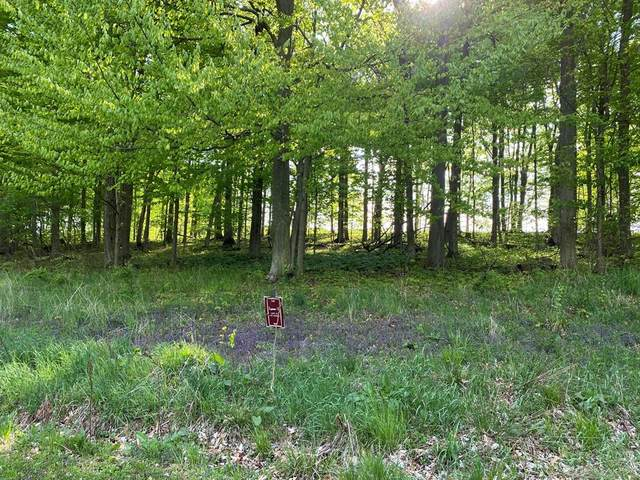 15 Lakewood Trail, Berrien Twp, MI 49102 (#69021016249) :: Real Estate For A CAUSE
