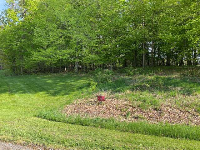 9122 Lakewood Trail, Berrien Twp, MI 49102 (#69021016260) :: Real Estate For A CAUSE