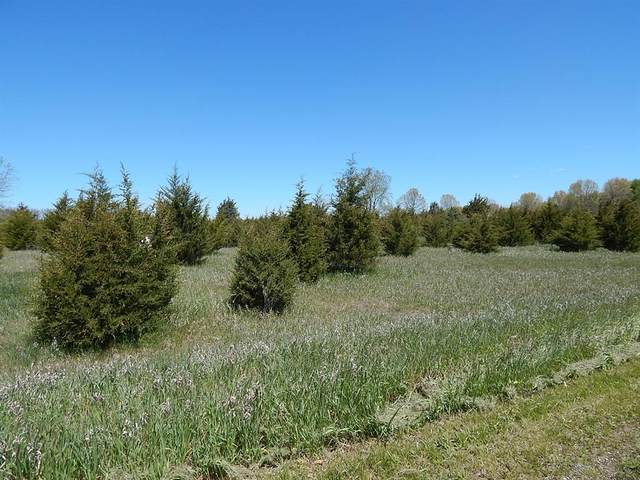 Lot 041 00 Carman Drive, Lockport Twp, MI 49093 (#68021016442) :: RE/MAX Nexus