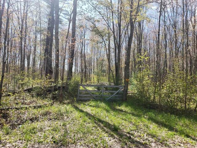 40 Acres 144th Avenue, Ferry Twp, MI 49455 (#67021016487) :: Real Estate For A CAUSE