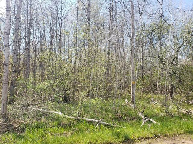 30 Acres 144th Avenue, Ferry Twp, MI 49455 (#67021016488) :: Real Estate For A CAUSE