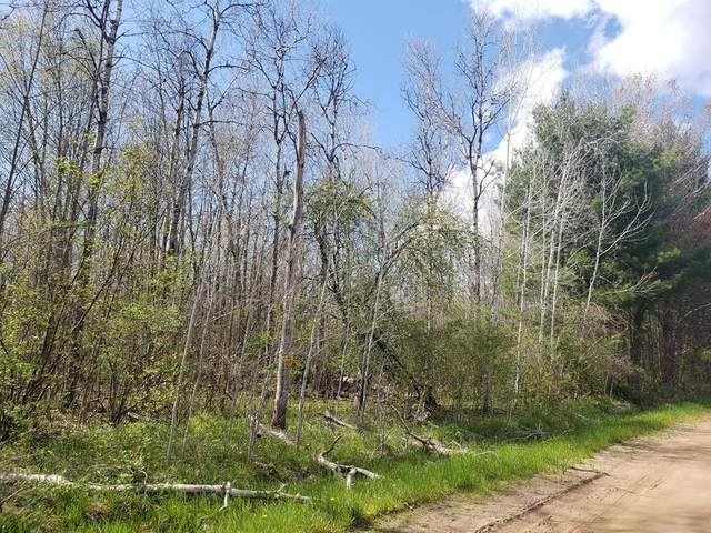 70 Acres 144th Avenue, Ferry Twp, MI 49455 (#67021016484) :: Real Estate For A CAUSE