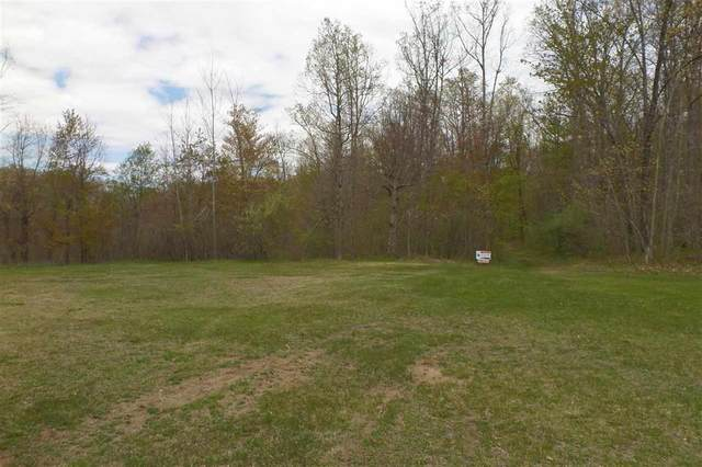 00 Indian Valley Trl, Deerfield Twp, MI 48855 (#5050041394) :: The Mulvihill Group