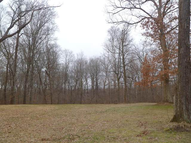 0 Kruger Road, New Buffalo Twp, MI 49129 (#69021016524) :: Real Estate For A CAUSE
