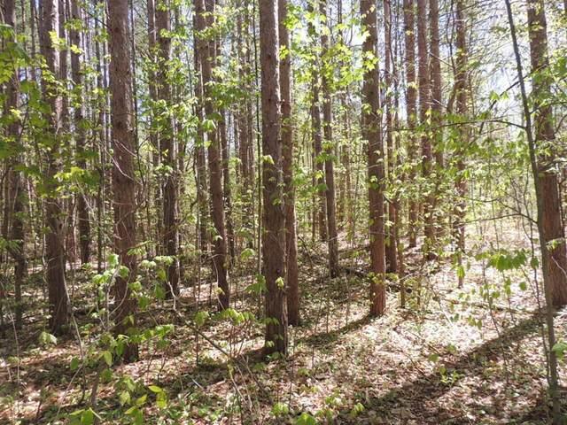 5804 Hunters Ridge Ridge, Manlius Twp, MI 49408 (#71021016572) :: GK Real Estate Team