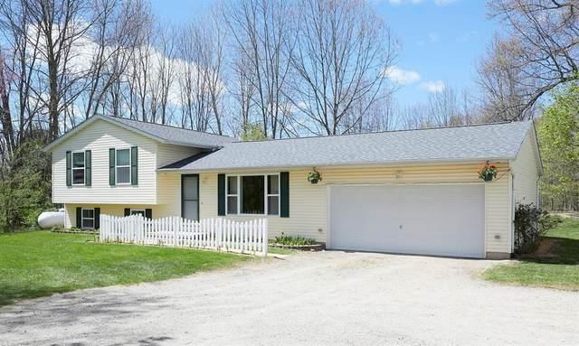 30202 Fish Hatchery Road, Almena Twp, MI 49009 (#66021016796) :: Real Estate For A CAUSE