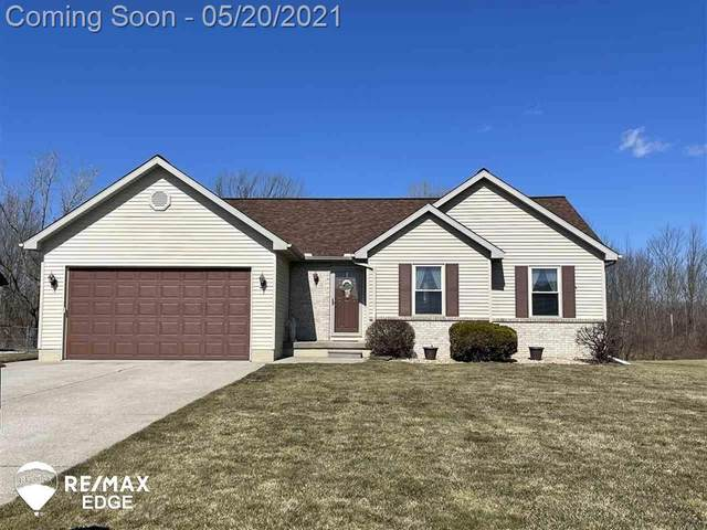 5337 Hickory, Hadley Twp, MI 48455 (#5050041627) :: Alan Brown Group