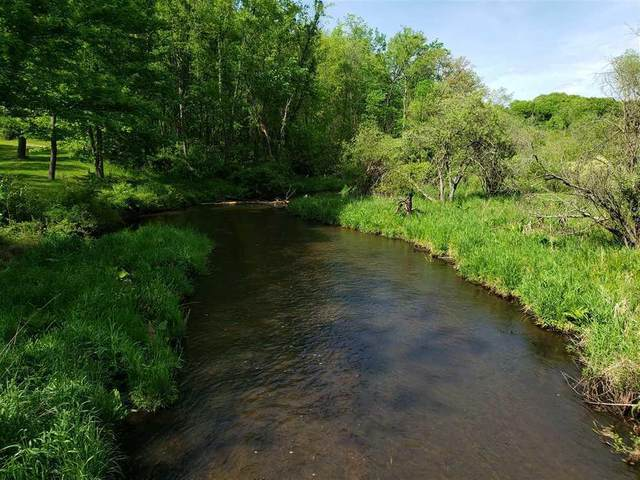 V/L M 40, Marcellus Twp, MI 49067 (#68021017211) :: Real Estate For A CAUSE
