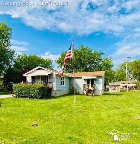 3359 Lakeview St., Frenchtown Twp, MI 48162 (#57050041886) :: The Alex Nugent Team | Real Estate One