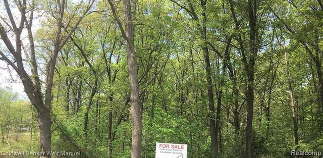 4590-D Maybee Road, Independence Twp, MI 48348 (#2210036688) :: GK Real Estate Team