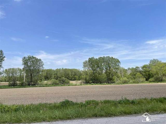 0000 Dixon Rd, Raisinville Twp, MI 48161 (#57050042281) :: Real Estate For A CAUSE