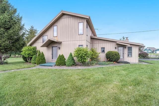 52216 Rivolake Road, MENDON TWP, MI 49093 (#68021018198) :: Real Estate For A CAUSE