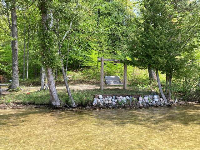 V/L N Benson Road, Sheridan Twp, MI 49410 (#67021018351) :: Real Estate For A CAUSE