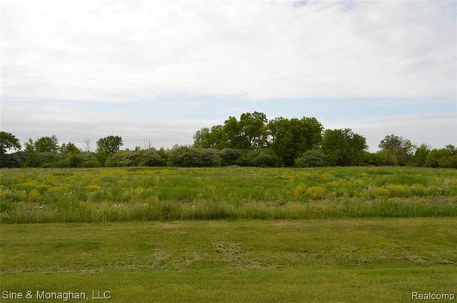 6811 Starville Rd, Cottrellville Twp, MI 48039 (#2210038081) :: Real Estate For A CAUSE