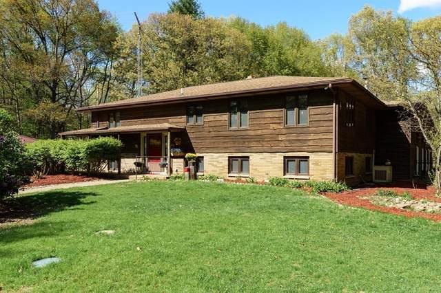 5363 E S Avenue, Pavilion Twp, MI 49097 (#66021018918) :: Real Estate For A CAUSE