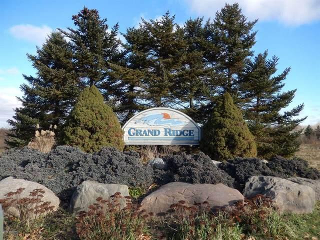 7249 Cedar Ridge Drive, Portland Twp, MI 48875 (#65019006416) :: NextHome Showcase