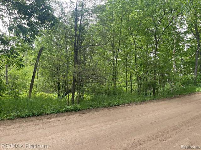 14205 Cole Road, Argentine Twp, MI 48451 (#2210038901) :: Real Estate For A CAUSE