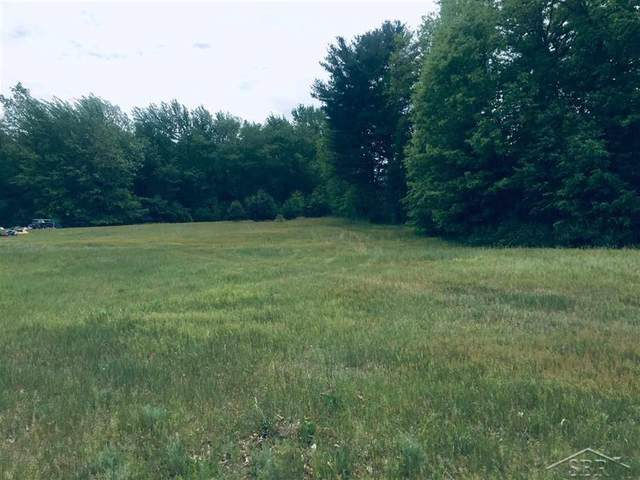 Andrews Road, Swan Creek Twp, MI 48655 (#61050042992) :: Real Estate For A CAUSE