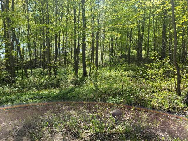 2.11 Acres N 84th Avenue, Hart Twp, MI 49420 (#67021019175) :: Real Estate For A CAUSE