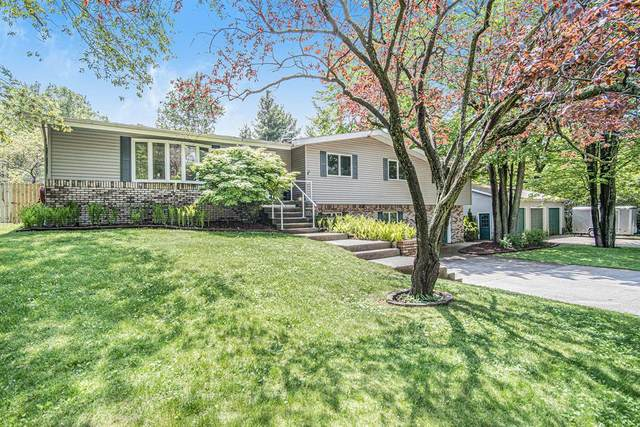 5765 W Limouze Street, Pere Marquette Twp, MI 49431 (#67021019303) :: Alan Brown Group