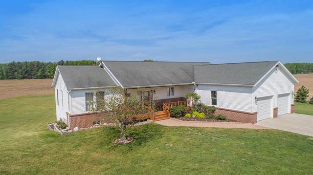 9221 N Miles Road, Belvidere Twp, MI 48886 (#65021019380) :: Real Estate For A CAUSE
