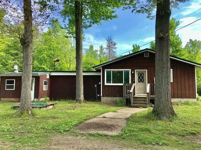 819 N Pine Avenue, Wilcox Twp, MI 49349 (#71021019378) :: Real Estate For A CAUSE