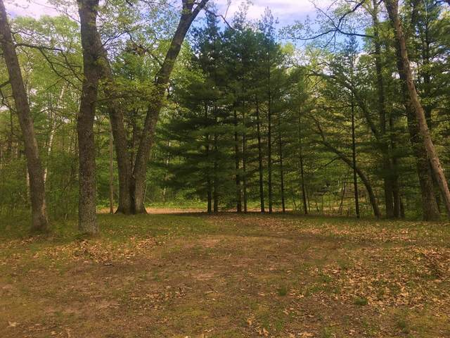 Vacant - James St., Norman Twp, MI 49689 (#67021019506) :: GK Real Estate Team