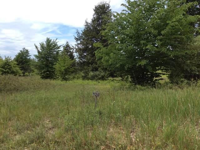 Portage Ridge, Onekama Twp, MI 49675 (#67021019967) :: Alan Brown Group