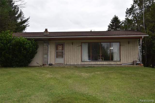 3010 N Sandusky Road, Wheatland Twp, MI 48471 (#2210041163) :: The Alex Nugent Team   Real Estate One