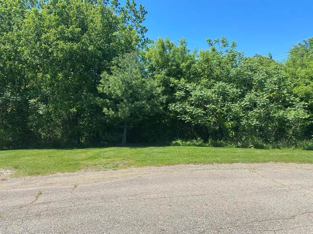 18 Diamond Harbor Court, PENN TWP, MI 49031 (#69021020135) :: Real Estate For A CAUSE