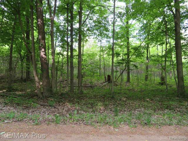 0000 S Force Road, Attica Twp, MI 48412 (#2210042081) :: Real Estate For A CAUSE