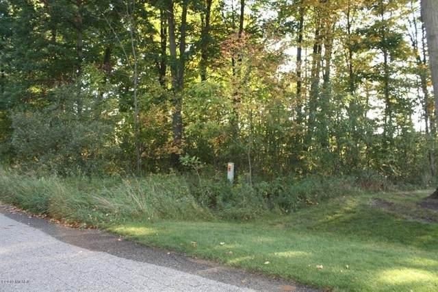 Lot 4 Trillium Lane, Big Rapids Twp, MI 49307 (#72021020810) :: RE/MAX Nexus