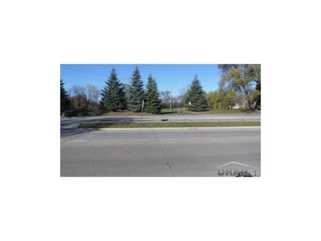 17110 Champaign, Allen Park, MI 48101 (#52031308153) :: The Mulvihill Group