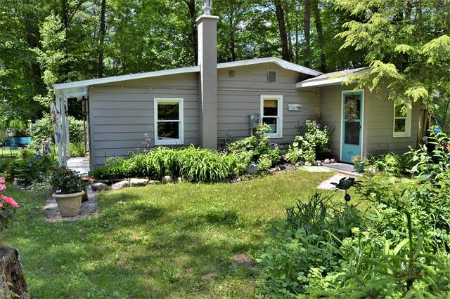 4429 S Croton Hardy Drive, Big Prairie Twp, MI 49337 (#72021020999) :: Real Estate For A CAUSE