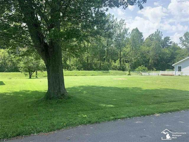 Sycamore, Frenchtown Twp, MI 48166 (#57050044080) :: GK Real Estate Team