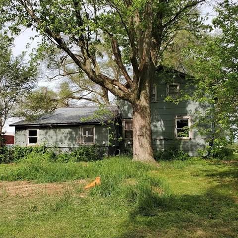 4115 S Arkona, Saline Township, MI 48176 (#543281509) :: Real Estate For A CAUSE