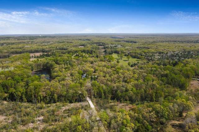 11498 N Zip Road, Grant Twp-Mason Co, MI 49660 (#67021021079) :: Real Estate For A CAUSE